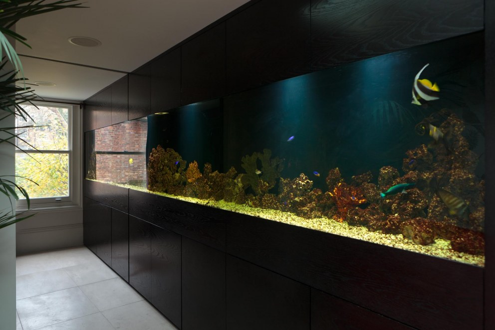 Notting Hill Residence | Fish tank | Interior Designers